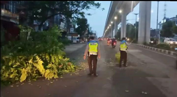 teks:IST- Evakuasi Pohon Tumbang Yang Dilakukan Satuan Tugas Pos Laka Tanjung Api-Api