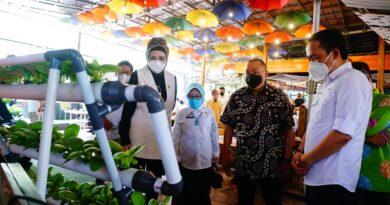 teks:IST- Anggota DPR RI H Alex Noerdin bersama dengan BPPT selaku mitra DPR RI, menyerahkan bantuan peratalatan pertanian berupa Hidrofonik, Bioflock dan mesing sangrai kopi kepada sejumlah kelompok tani Sumsel, Rabu (25/8) di Guns Cafe Palembang.